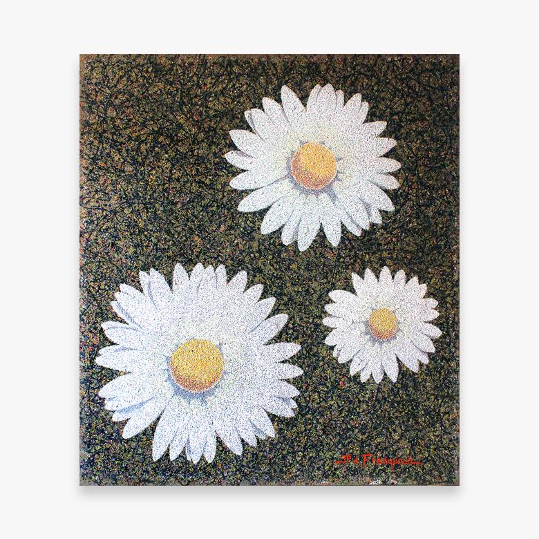 daisies 780