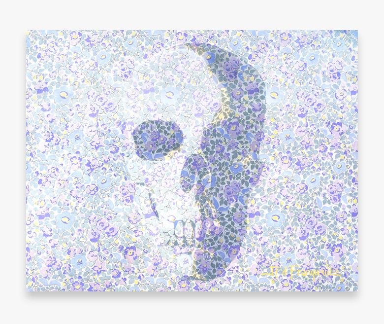 skull encart